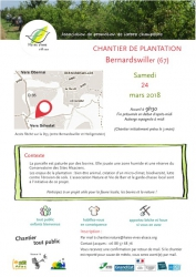 chantier plantation_haies